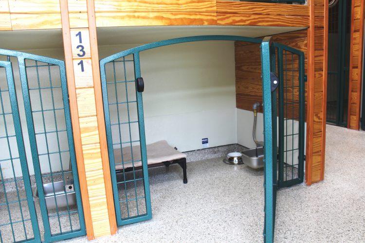 Junior Dog Boarding Suite