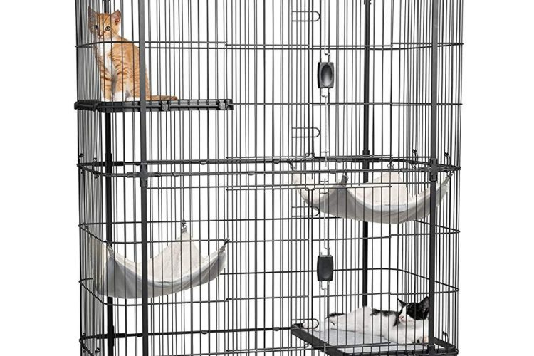 Cat Boarding Condo